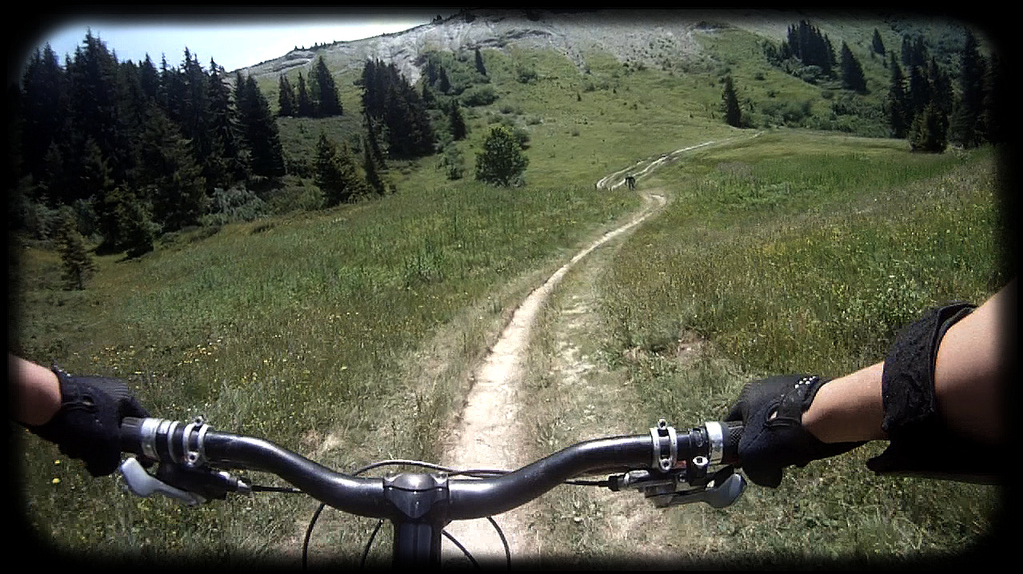 Perfect Alps Singletrack